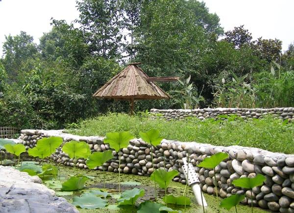 Farm in Anlong Village